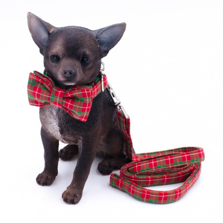 "Collar + Correa Mascota ""Scottish"""